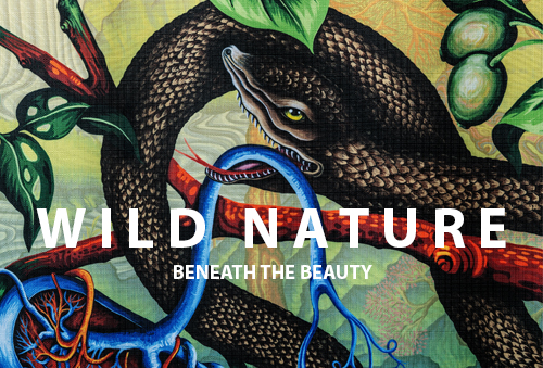 wildnature2020 - Wild Nature: Beneath the Beauty - Wexler Gallery